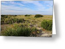 Tybee Island Dunes And Path Greeting Card