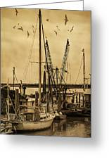 Tybee Island Shrimp Boats Greeting Card
