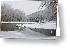 Tyler Park In Winter Greeting Card