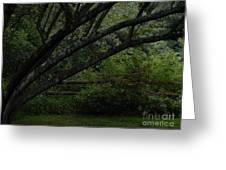 Tyler Tree 1 Greeting Card