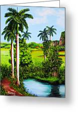 Typical Country Cuban Landscape Greeting Card