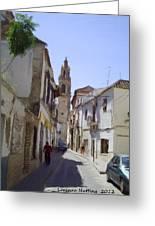 Typical Street In Ecija Spain Greeting Card