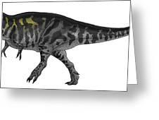 Tyrannosaurus Rex, A Large Predator Greeting Card