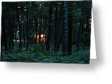 Udell Sunset Greeting Card