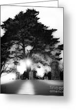 Under A Cold Sun Greeting Card