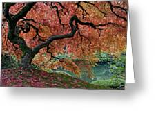 Under Fall's Cover Greeting Card