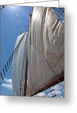 Under Sail Greeting Card
