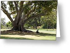 Under The Big Old Tree Greeting Card