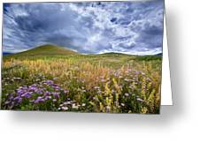 Under The Big Sky Greeting Card