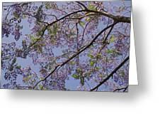 Under The Jacaranda Tree Greeting Card