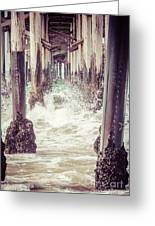 Under The Pier Vintage California Picture Greeting Card