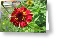 Under The Shadow Greeting Card