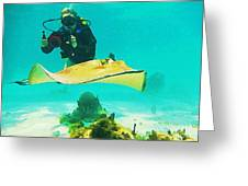 Underwater Photographer And Stingray Greeting Card