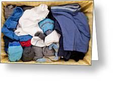 Underwear And Socks Greeting Card by Tom Gowanlock