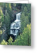 109008-undine Falls In Yellowstone Greeting Card