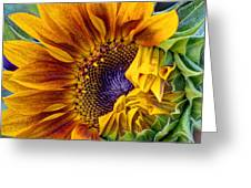 Unfurling Beauty - Cropped Version Greeting Card