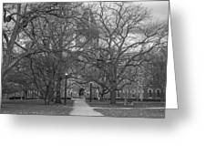 University Hall And Pathway Osu Greeting Card