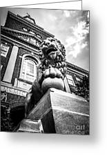 University Of Cincinnati Lion Black And White Picture Greeting Card
