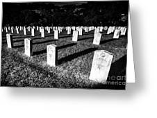 Unknown Soldier Cemetery Greeting Card