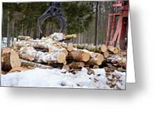 Unloading Firewood 3 Greeting Card