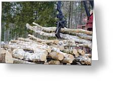 Unloading Firewood 4 Greeting Card
