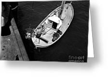 Unloading Fish At Wharf Two Monterey  Circa 1950  Greeting Card