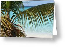 Unplugged In Paradise Greeting Card