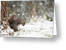 Unprepared For Winter Greeting Card