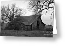 Until The Cows Come Home Greeting Card