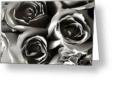 Bw Rose Bouquet 2 Greeting Card