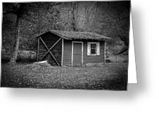 A Place In The Woods Greeting Card