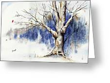 Untitled Winter Tree Greeting Card