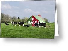 Up Mayo Greeting Card