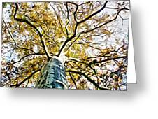 Up The Tree Greeting Card