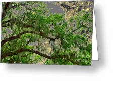 Up Through The Haunted Tree Greeting Card