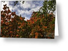 Up To The Sky Greeting Card