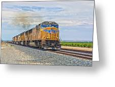 Up4421 Greeting Card