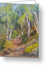 Uphill Path-batiquitos Greeting Card