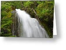 Upper Cougar Falls Greeting Card