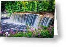 Upper Falls Greeting Card by Thomas Pettengill