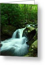 Upper Lynn Camp Prong Cascades Greeting Card