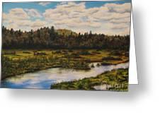 Upper Sacandaga River Greeting Card