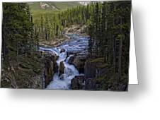 Upper Sunwapta Falls - Canadian Rockies Greeting Card