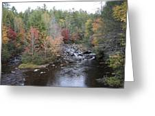 Island In The Stream Greeting Card