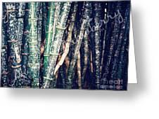 Urban Bamboo Greeting Card