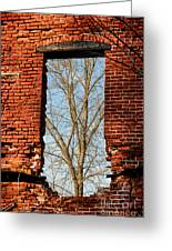 Urban Decay Greeting Card by Olivier Le Queinec
