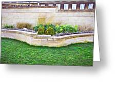 Urban Garden Greeting Card