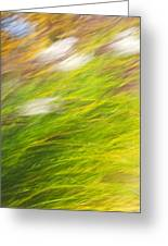 Urban Nature Fall Grass Abstract Greeting Card