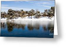 Urban Pond In Snow Greeting Card