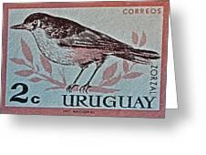 Uruguay Bird Stamp - Circa 1962 Greeting Card
